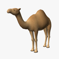 camel edge loop 3d obj