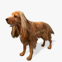 Real-Time Dog Cocker Spaniel - 1