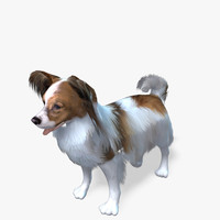 s dog papillon real-time model