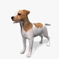 model s dog terier real-time
