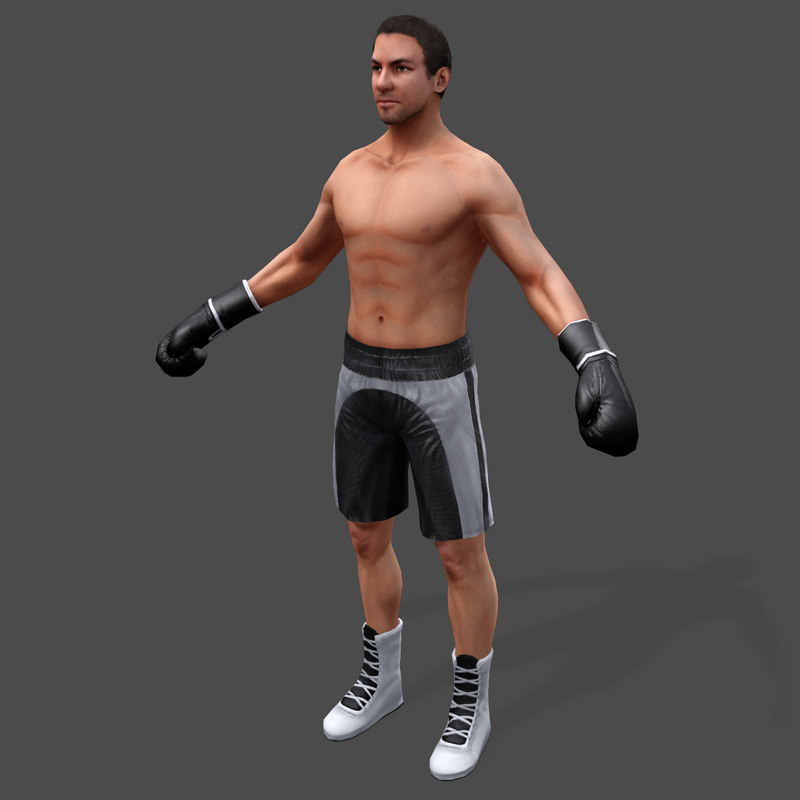 3d boxer real-time