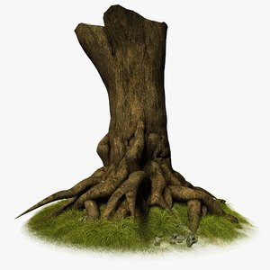 tree root trunk 3d model