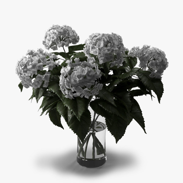 3d model hydrangea bouquet vase
