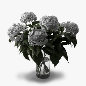 3d model hydrangea bouquet vase