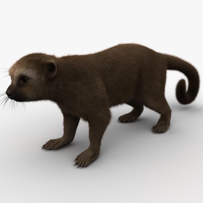3d model kinkajou fur