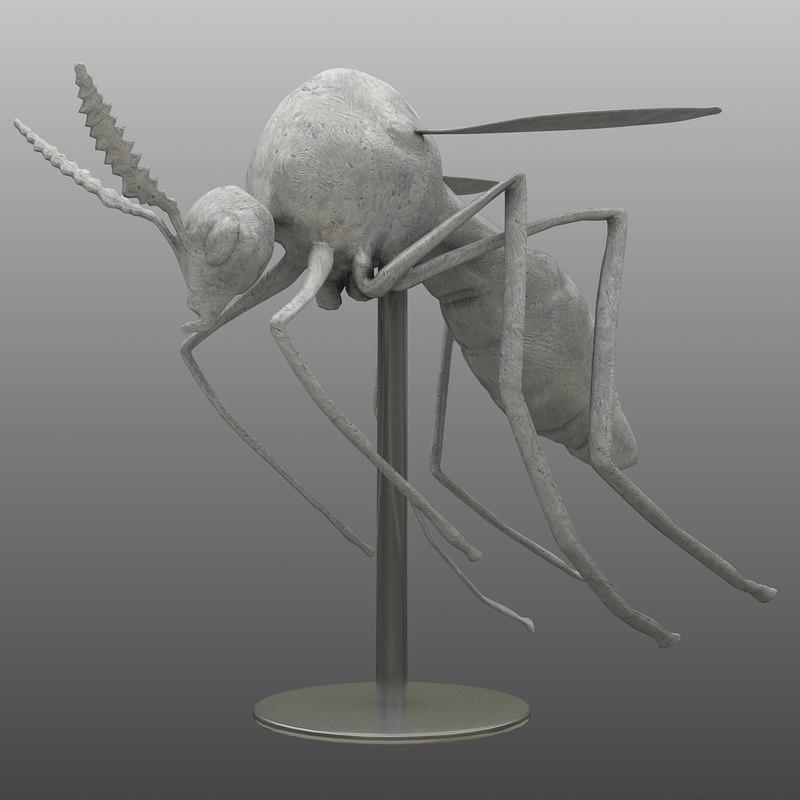 3d decor mosquito