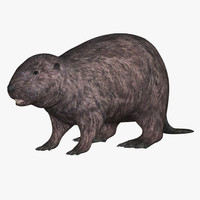 max beaver