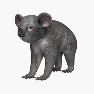 koala 3d 3ds