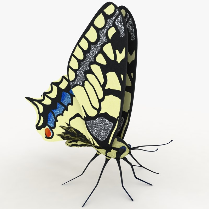 butterfly papilio machaon rigged 3d model