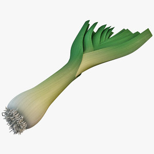 leek vegetable modelled 3d max
