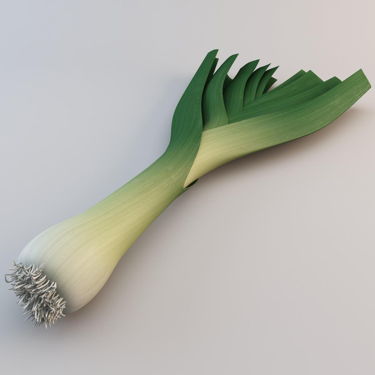 leek vegetable modelled 3d max