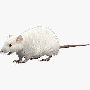 3d mouse fur model