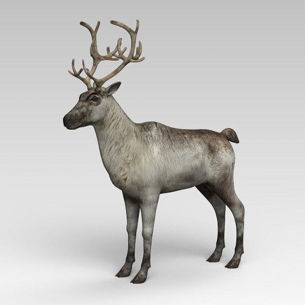 reindeer 3d 3ds