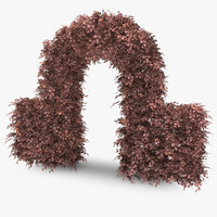 copper beech hedge arch 3d model
