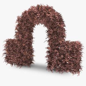 copper beech hedge arch 3d model