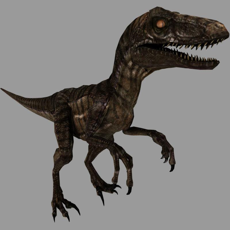 3d model of rigged velociraptor animation raptor