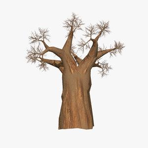 3d model of tree africa madagascar