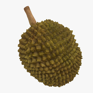 max durian fruit