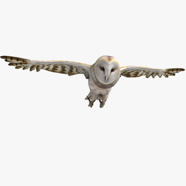 3ds max barn owl rigged