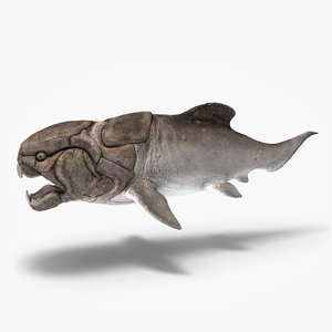 max dunkleosteus fishes devonian