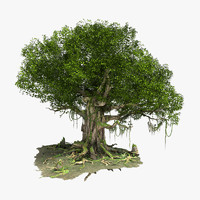 max fantastic tree modeled