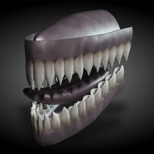 rigged teeth 3d model