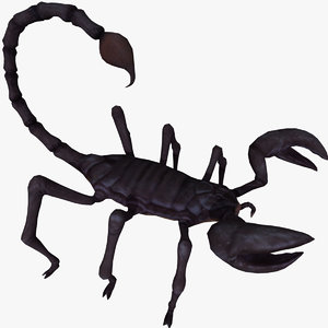black scorpion rigged 3d obj