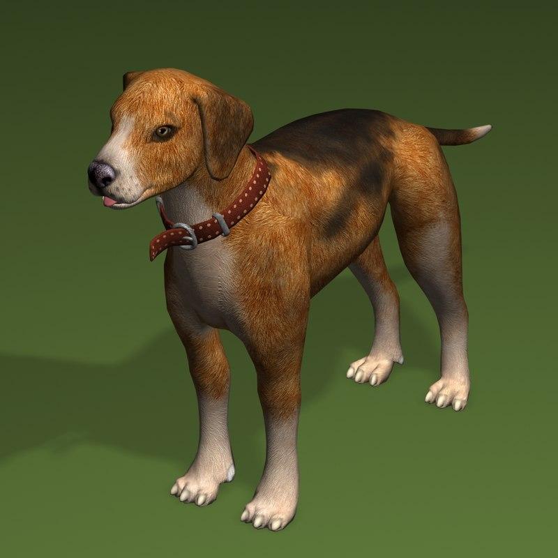 max dog beagle
