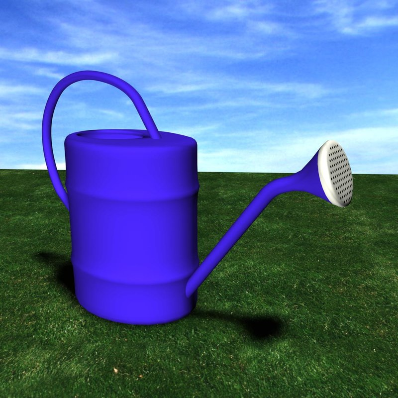 flowers water 3d model