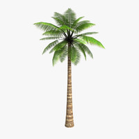 3d model of low-poly palm tree