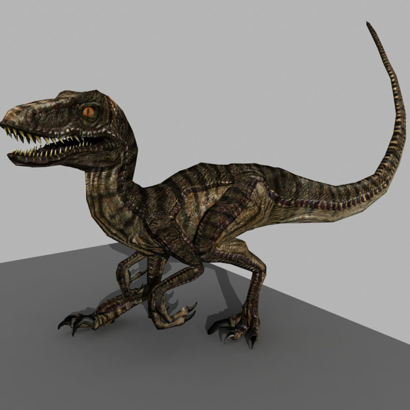 3d rigged velociraptor animation
