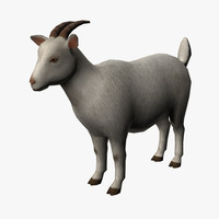 goat edge loop 3d model