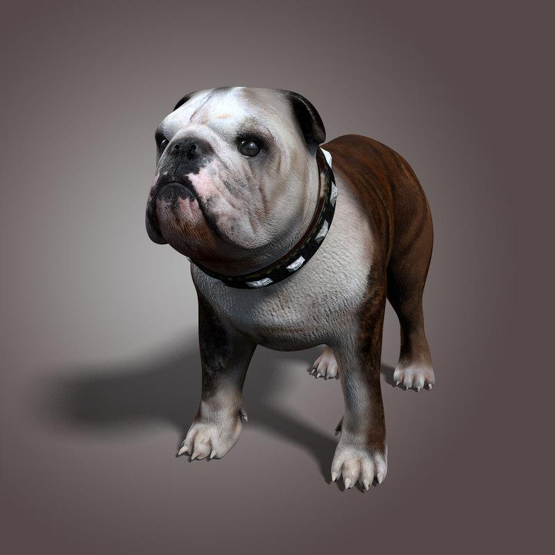 bulldog animal collar 3d model