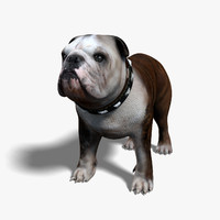 bulldog animal collar 3d model