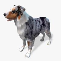 s dog australian shepard max