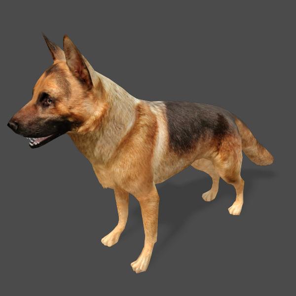 max games dog german shepard