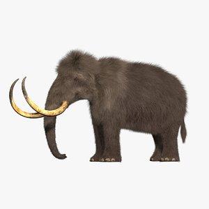 hair mammoth 3d c4d
