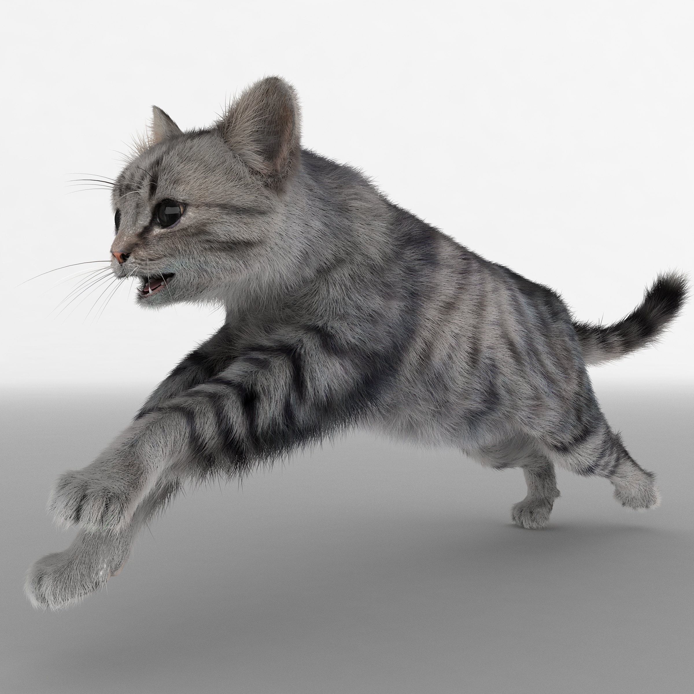 cat 3 pose 2 3d max
