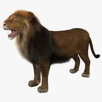 lion rigged 3d model