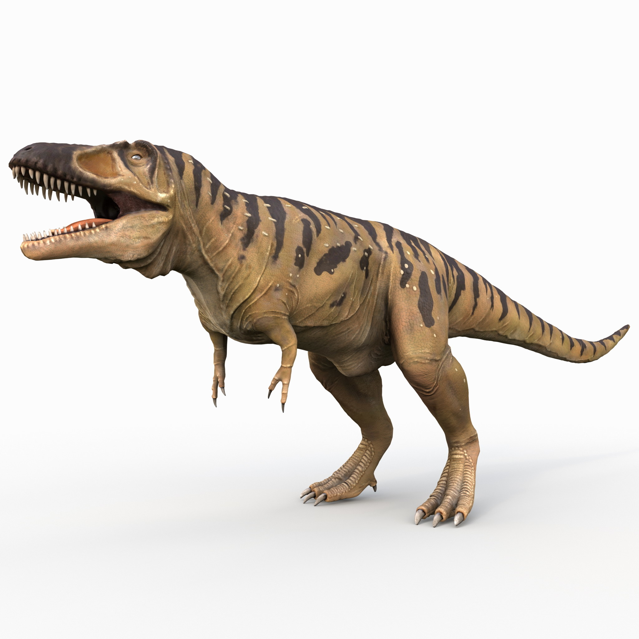 3d model tarbosaurus rigged dinosaur