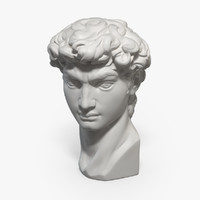 Michelangelo's David Head