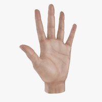 3ds max realistic hand