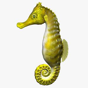 3d model of seahorse sea