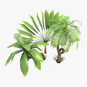 3d model toon palms