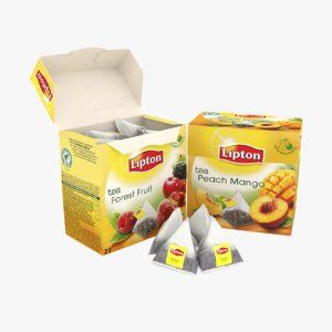 tea lipton pyramid 3d model