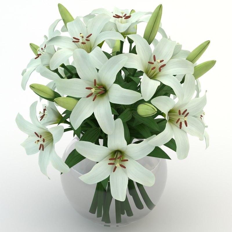 3d lily white model