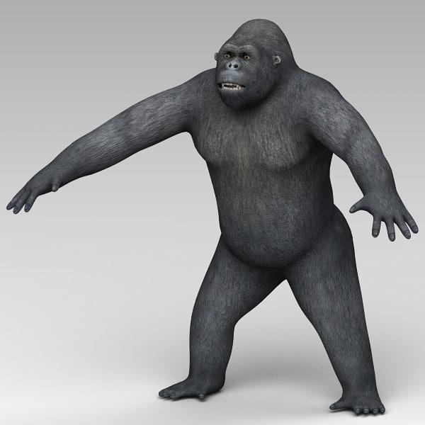 c4d gorilla