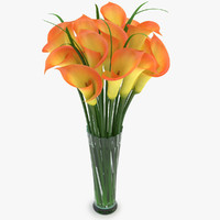 calla yellow 3d model