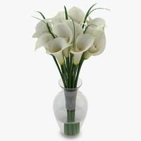 3d model calla white