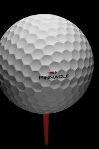 3d golf clubs lodge model